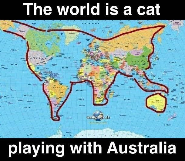 Meme about how the map of the world also looks like a giant kitten playing with Australia