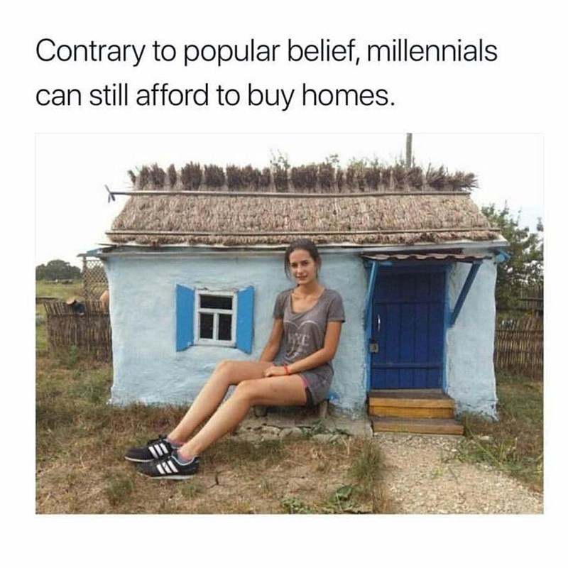 Funny meme about millennials being able to buy houses, but they can only buy small houses.
