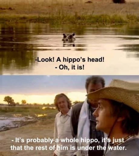 Friendship - -Look! A hippo's head! - Oh, it is! -It's probably a whole hippo, it's just that the rest of him is under the water.