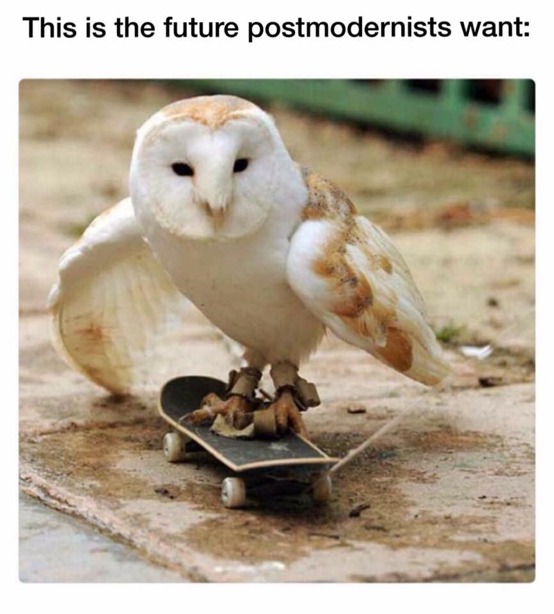 Meme about the future that post modernists want with a pic of an owl riding a skateboard