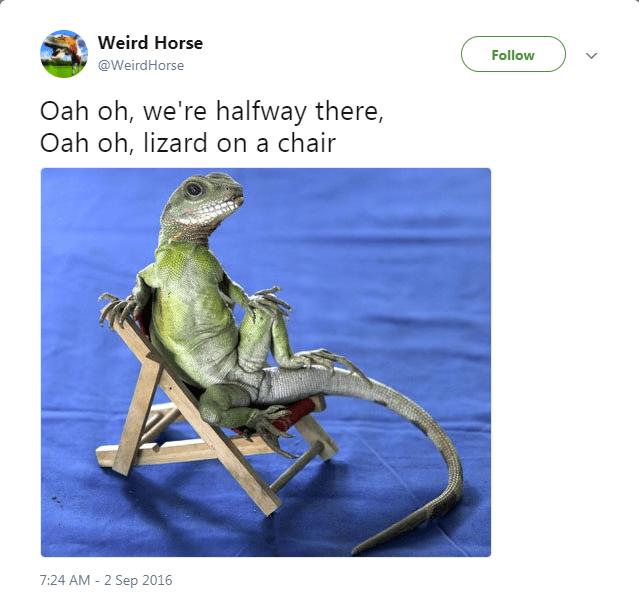 Organism - Weird Horse Follow @WeirdHorse Oah oh, we're halfway there, Oah oh, lizard on a chair 7:24 AM-2 Sep 2016