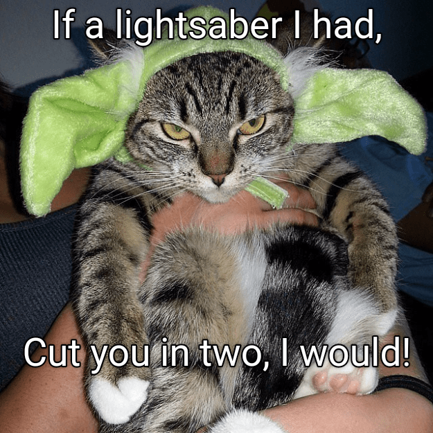 Cat - If a lightsaber 1 had, Cut youin two, I would!