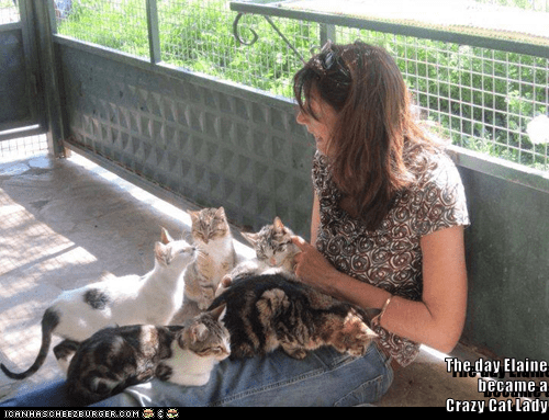 Mammal - The day Elaine became a Crazy Cat lady CANHASCHEE2EURGER cOM