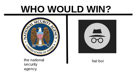 meme image about the NSA verus Hat boi and who would win