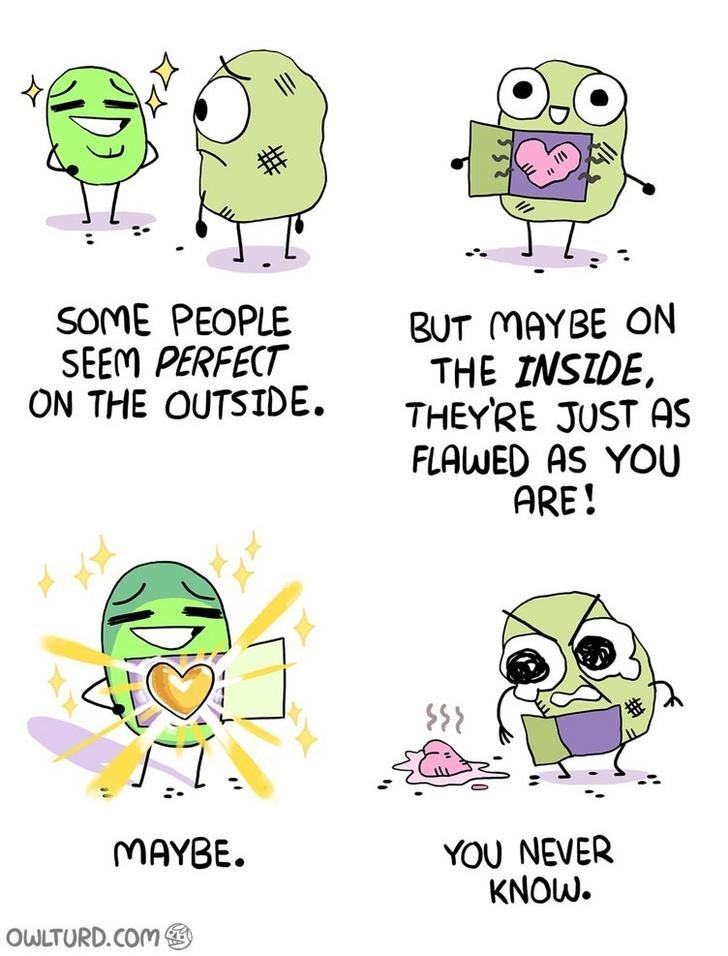 webcomic - Text - SOME PEOPLE SEEM PERFECT ON THE OUTSIDE BUT MAYBE ON THE INSIDE THEYRE JUST AS FLAWED AS YOU ARE! MAYBE YOU NEVER KNOW. OWLTURD.COM