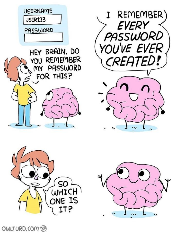 webcomic - Cartoon - USERNAME I REMEMBER EVERY PASSWORD YOU'VE EVER CREATED! USER123 PASSWORD HEY BRAIN, DO YOU REMEMBER MY PASSWORD FOR THIS? WHICH ONE IS IT? OWLTURD.COM
