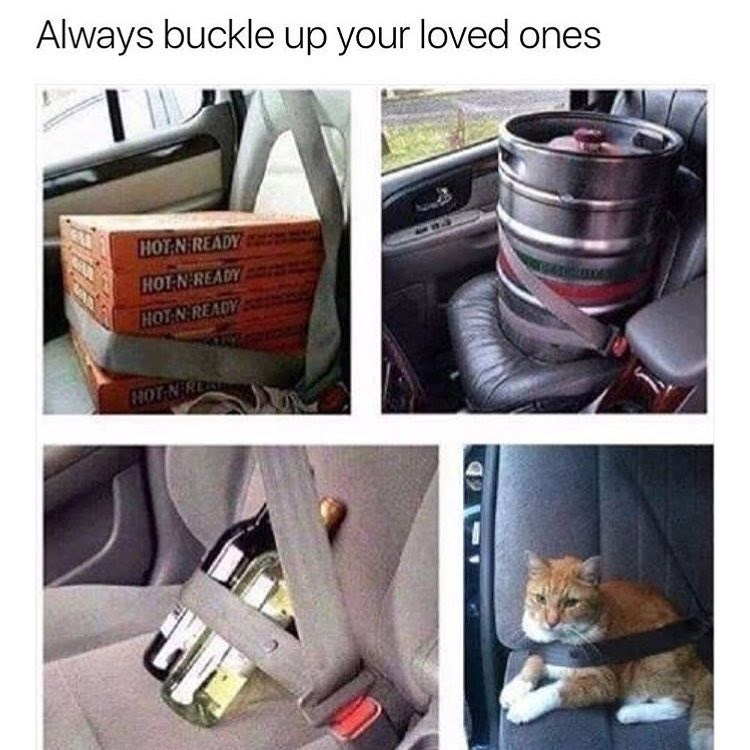Funny meme about using seat belts on what you love.