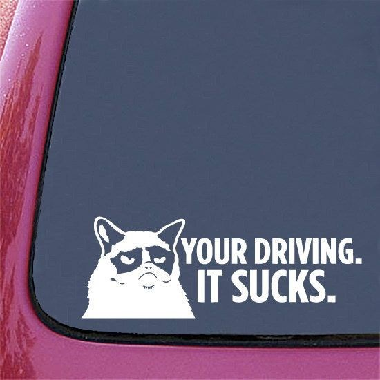 Canidae - YOUR DRIVING IT SUCKS.