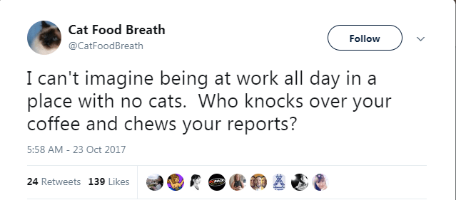 Text - Cat Food Breath Follow @CatFoodBreath I can't imagine being at work all day in a place with no cats. Who knocks over your coffee and chews your reports? 5:58 AM - 23 Oct 2017 24 Retweets 139 Likes