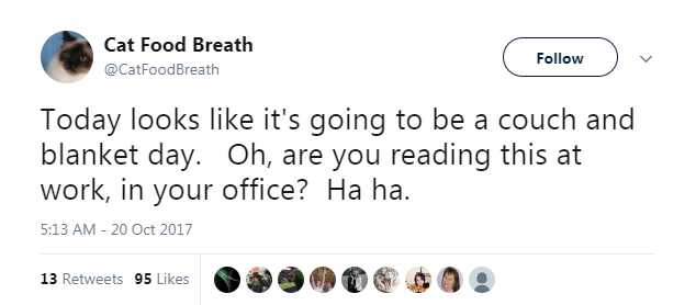 Text - Cat Food Breath Follow @CatFoodBreath Today looks like it's going to be a couch and blanket day. Oh, are you reading this at work, in your office? Ha ha 5:13 AM 20 Oct 2017 13 Retweets 95 Likes