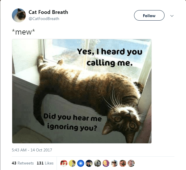 Text - Cat Food Breath Follow @CatFoodBreath *mew* Yes, I heard you calling me. Did you hear me ignoring you? 5:43 AM - 14 Oct 2017 43 Retweets 131 Likes
