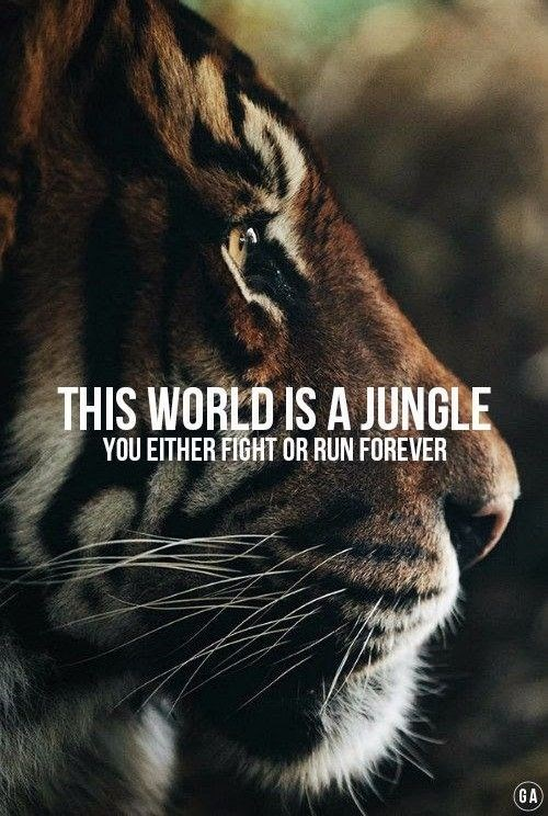 Bengal tiger - THIS WORLD IS A JUNGLE YOU EITHER FIGHT OR RUN FOREVER GA)