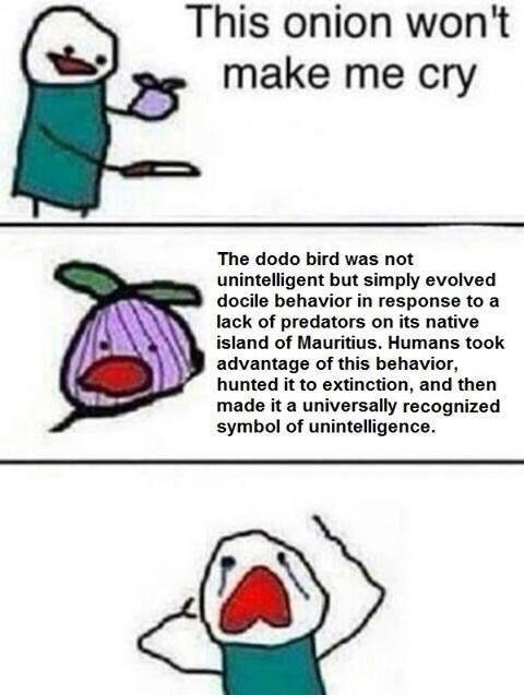 Funny comic about onions making you cry.