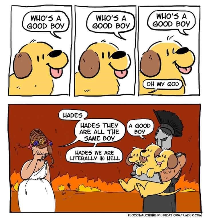 Cartoon - WHO'S A GOOD BOY WHO'S A GOOD BOY S,OMM GOOD BOY OH MY GOD HADES HADES THEY ARE ALL THE SAME BOY A GOOD BOY HADES WE ARE LITERALLY IN HELL FLOCCINAUCINIHILIPILIFICATIONA TUMBLR.COM