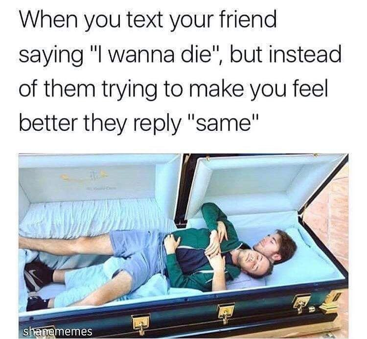 Funny meme about wanting to die and your friend wants to die too.