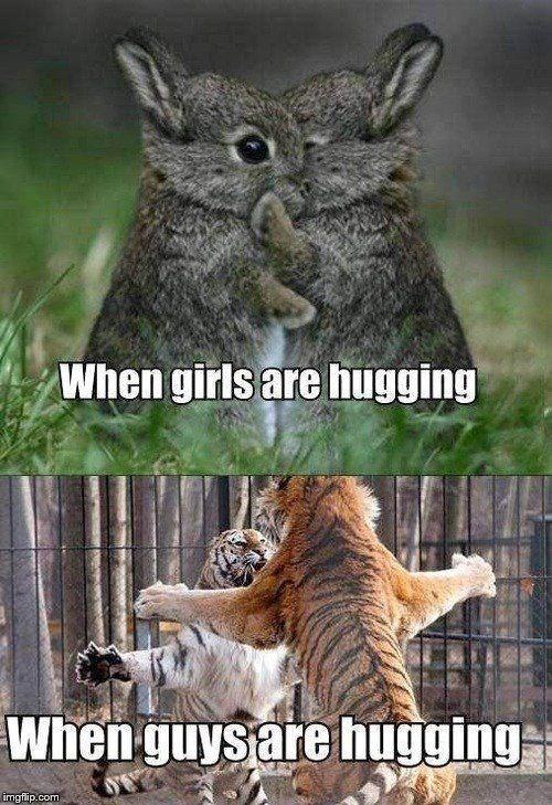 Vertebrate - When girls are hugging When guysare hugging imgflip.com