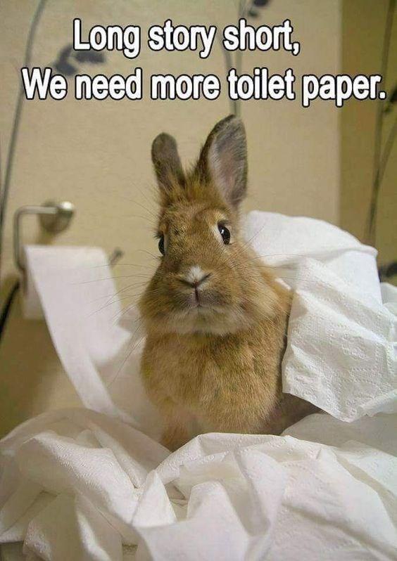 Mammal - Long story short, We need more toilet paper.