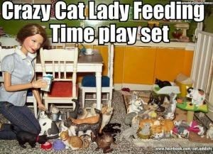 crazy cat lady meme with pic of dollhouse filled with cat dolls