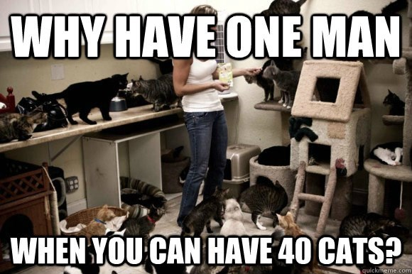 crazy cat lady meme about replacing people with cats