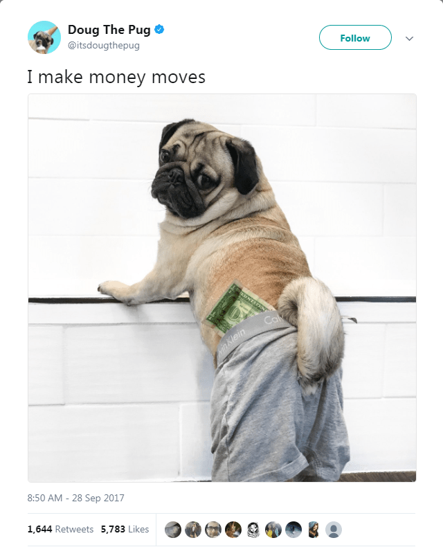 Dog - Doug The Pug @itsdougthepug Follow I make money moves UNTATKNS Cal inKlein 8:50 AM - 28 Sep 2017 1,644 Retweets 5,783 Likes