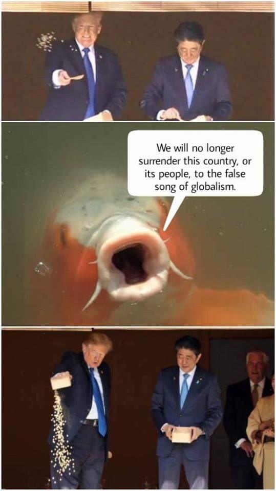 Trump meme of him feeding a patriotic koi fish
