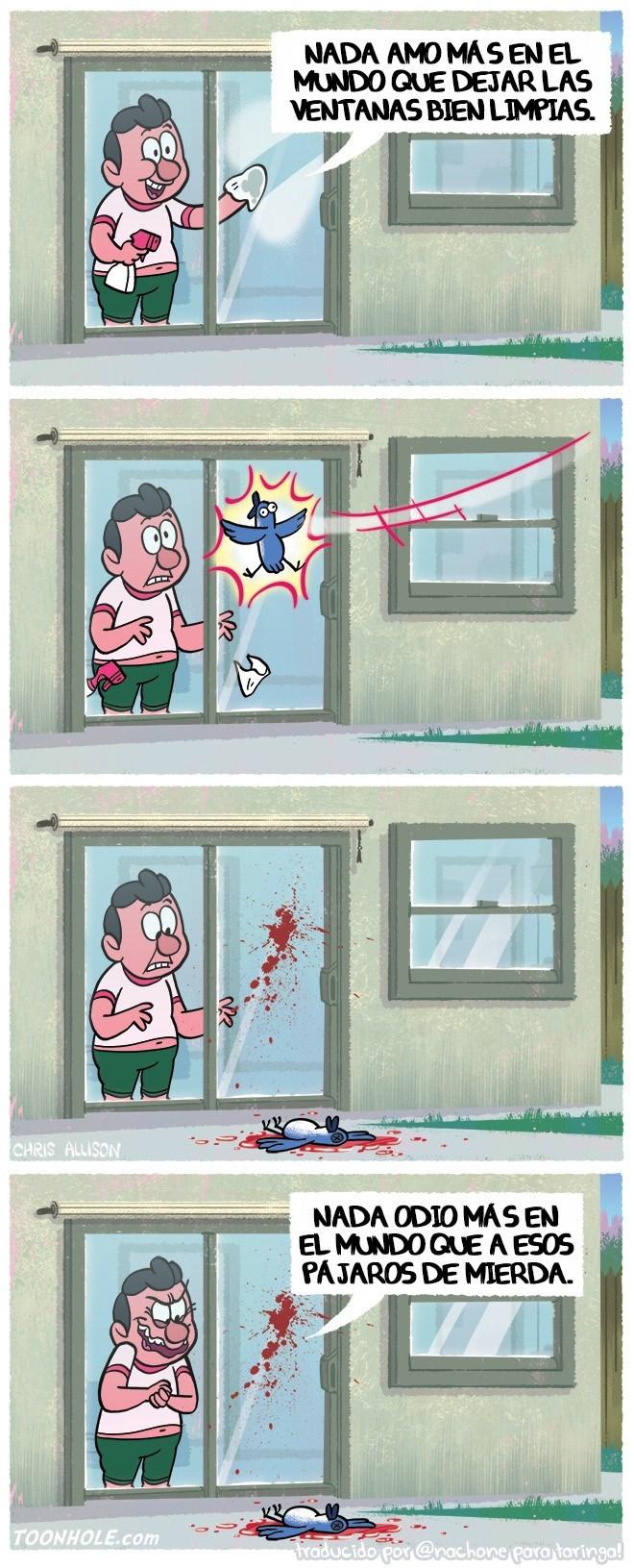 limpiar las ventanas para que los pajaros se estrellen