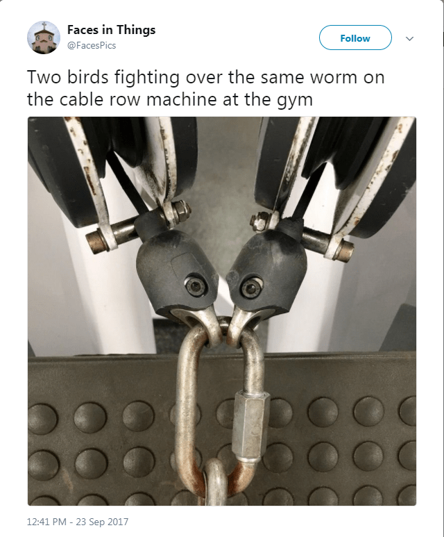 Fashion accessory - Faces in Things Follow @FacesPics Two birds fighting over the same worm on the cable row machine at the gym 12:41 PM - 23 Sep 2017