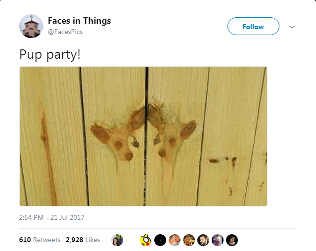 Wood - Faces in Things Follow @FacesPics Pup party! 21 Jul 2017 2:54 PM 610 Retweets 2,928 Likes