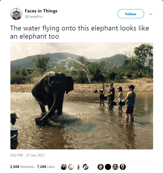 Elephant - Faces in Things Follow @FacesPics The water flying onto this elephant looks like an elephant too 3:02 PM -27 Jun 2017 2,506 Retweets 7,296 Likes