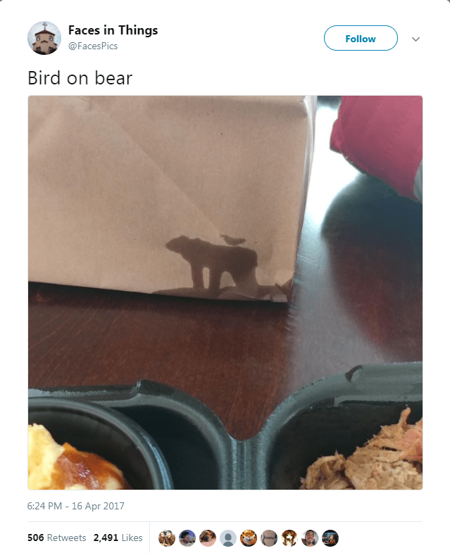 Font - Faces in Things Follow @FacesPics Bird on bear 6:24 PM - 16 Apr 2017 506 Retweets 2,491 Likes