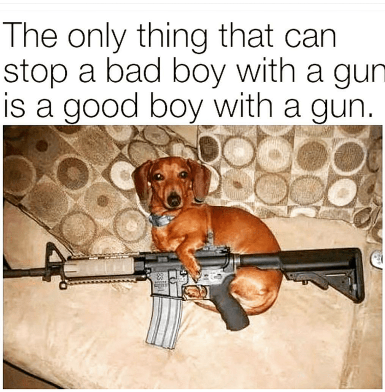 dog meme of a good boy with a gun is the only way to stop a bad boy with a gun