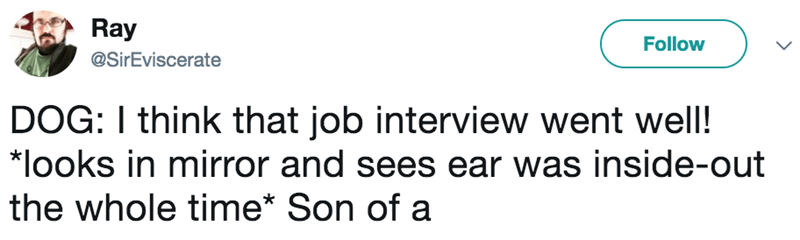 Text - Ray Follow @SirEviscerate DOG: I think that job interview went well! | *looks in mirror and sees ear was inside-out the whole time* Son of a