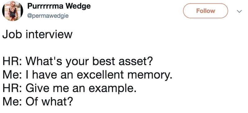 Text - Purrrrrma Wedge Follow @permawedgie Job interview HR: What's your best asset? Me: I have an excellent memory. HR: Give me an example. Me: Of what?