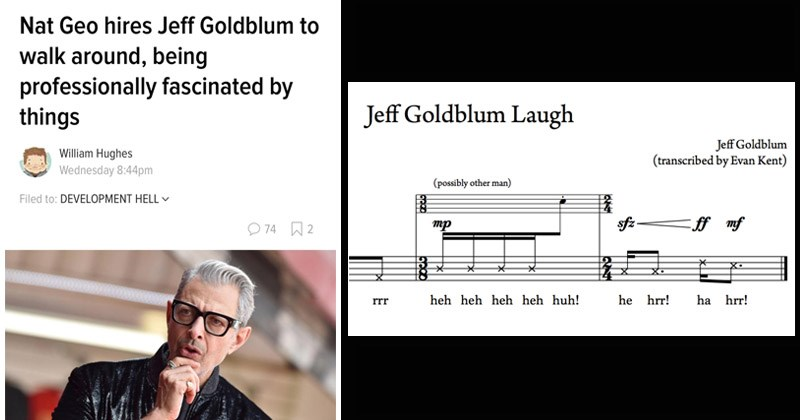 Funny memes about Jeff Goldblum