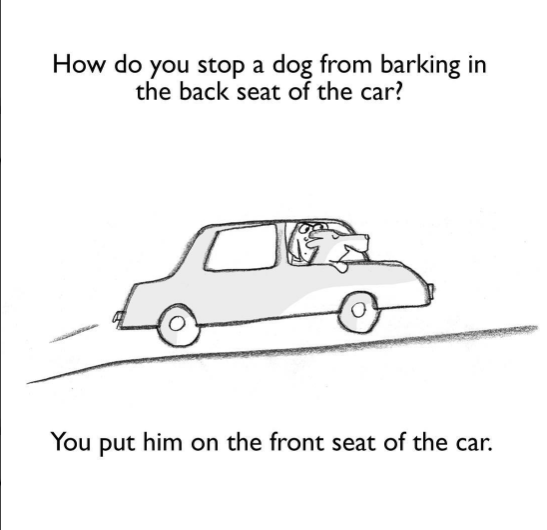 Motor vehicle - How do you stop a dog from barking in the back seat of the car? You put him on the front seat of the car