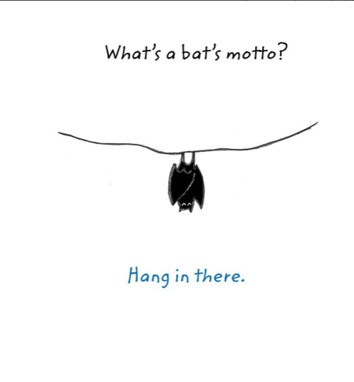 Text - What's a bat's motto? Hang in there.
