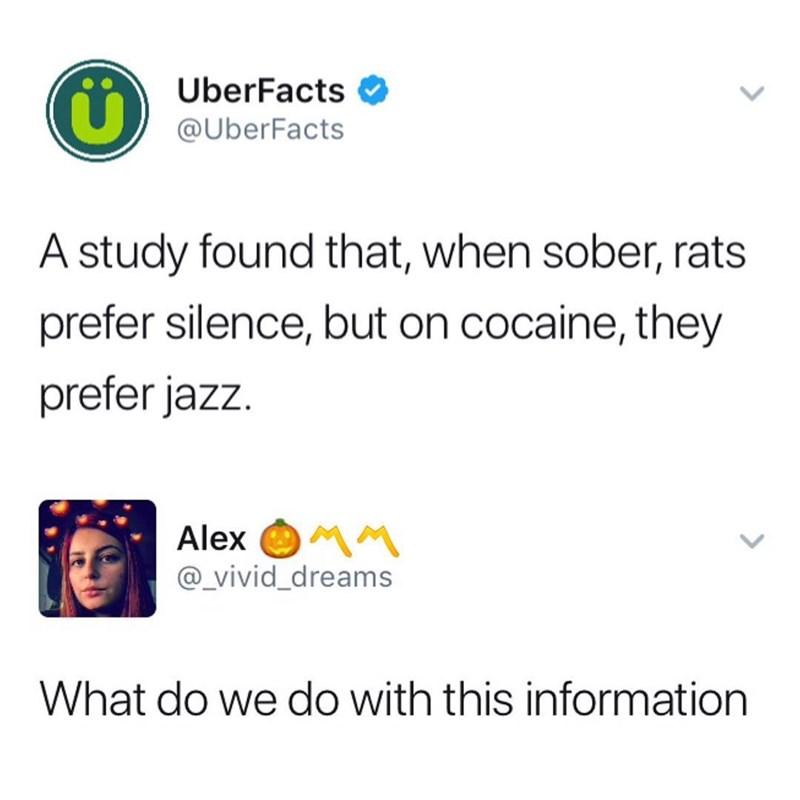 memebase jazz all your memes in our base funny memes