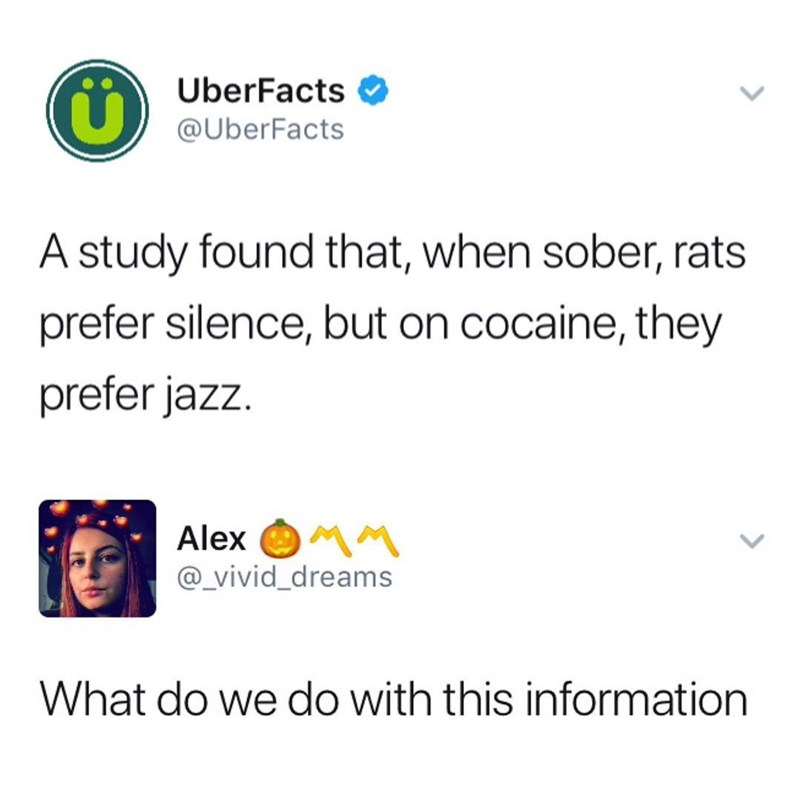 Funny meme about how rats like jazz when they are on cocaine.