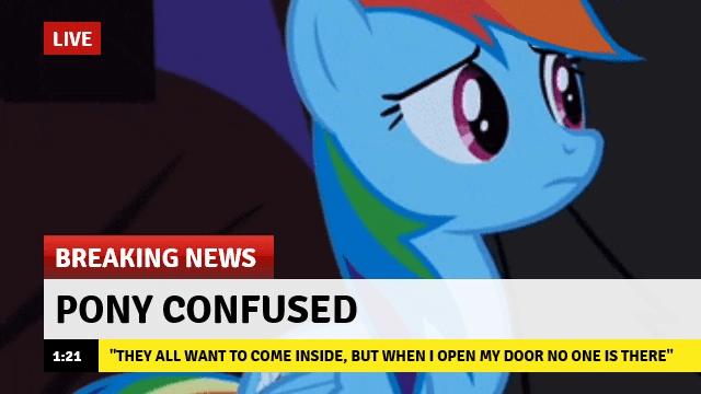 Memes Breaking News rainbow dash - 9094215168