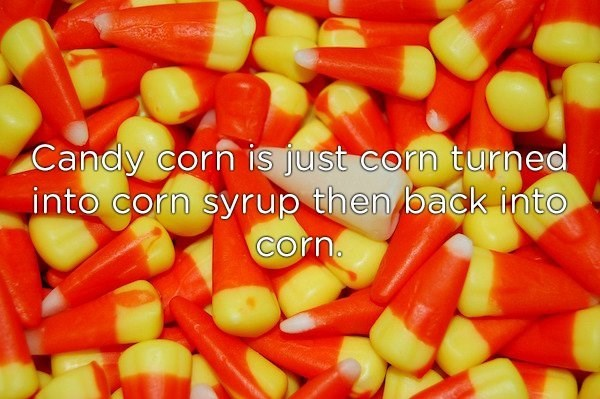 Food - Candy corn is just corn turned into corn syrup then back into corn