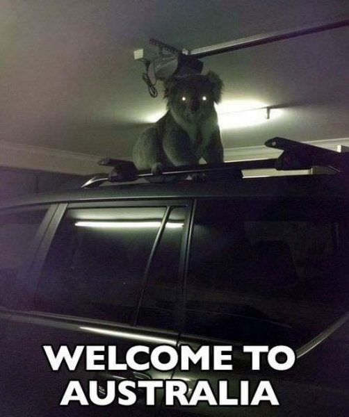 Sky - WELCOME TO AUSTRALIA