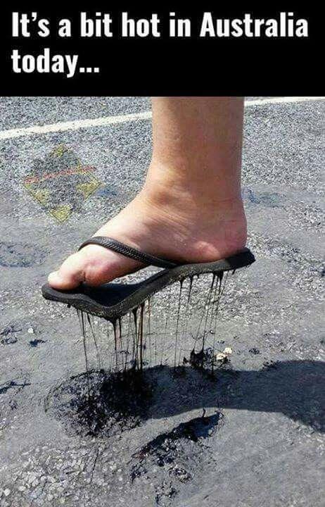 Leg - It's a bit hot in Australia today...