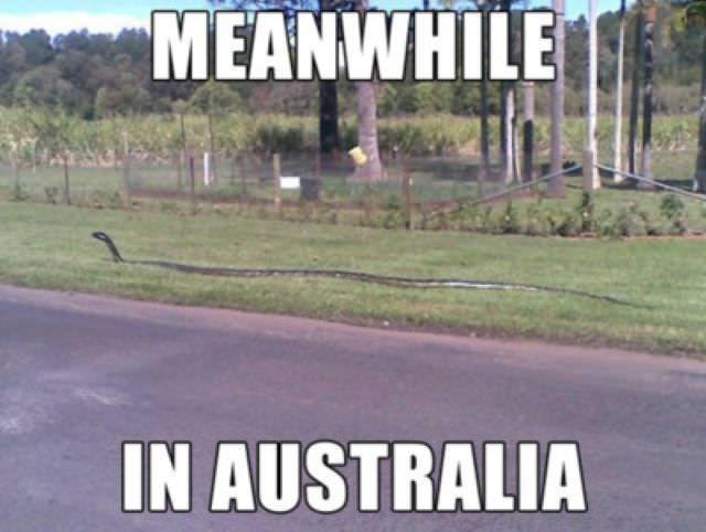 Asphalt - MEANWHILE IN AUSTRALIA