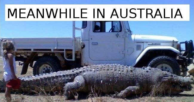 Vehicle - MEANWHILE IN AUSTRALIA
