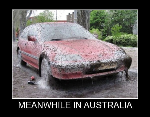 Land vehicle - MEANWHILE IN AUSTRALIA