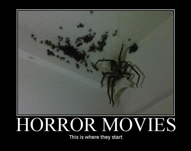 Text - HORROR MOVIES This is where they start