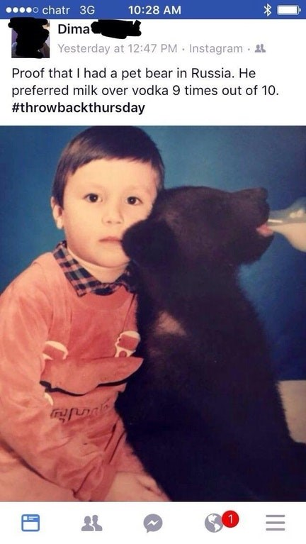 Dog breed - o chatr 3G Dima Yesterday at 12:47 PM Instagram 10:28 AM Proof that I had a pet bear in Russia. He preferred milk over vodka 9 times out of 10 #throwbackthursday   