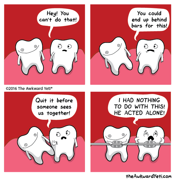 White - Hey! You can't do that! You could end up behind bars for this! 2016 The Awkward Yeti I HAD NOTHING TO DO WITH THIS! Quit it before someone sees HE ACTED ALONE! us together! theAwkwardYeti.com