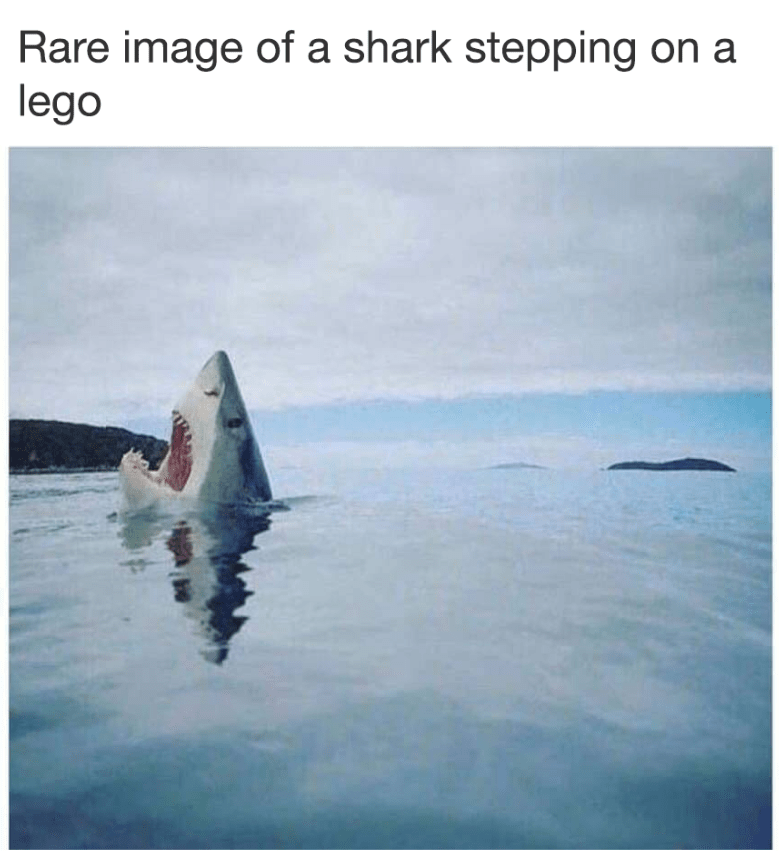 Funny meme about shark stepping on a lego.