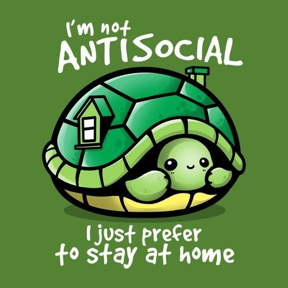 anti-social turtle meme